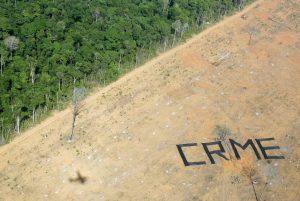 deforestation-amazonie_133